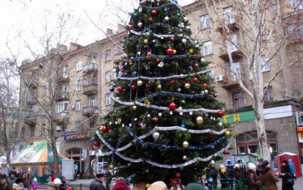 Из фильма ужасов: елка за три миллиона шокировала украинцев