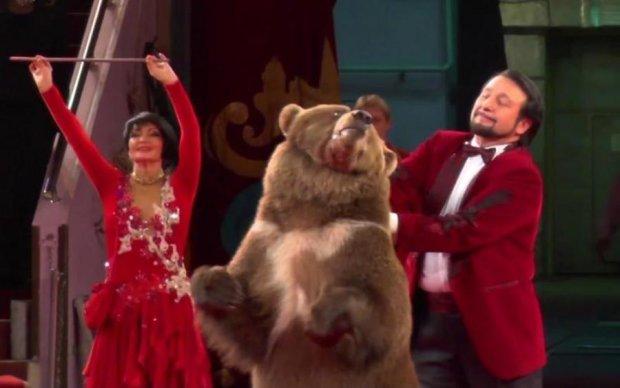 Знавіснілий ведмідь у цирку вирішив замінити дресирувальника: відео