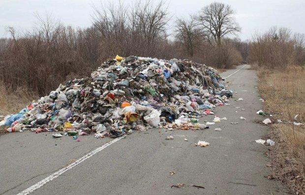 Украинцев заставят платить за выброс мусора: в Раде готовят радикальный закон