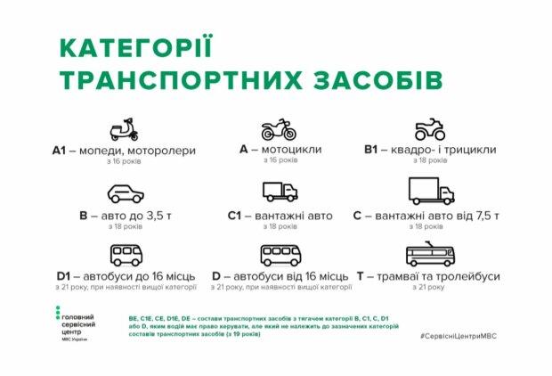 Категорії ТЗ, скріншот: hsc.gov.ua