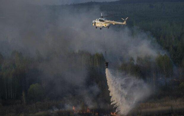 Новый пожар и еще больше радиации – адское пламя съедает Чернобыльскую зону, закрывайте окна