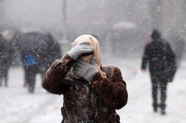 Зима не по графику: Карпаты засыпало снегом, кадры аномалии