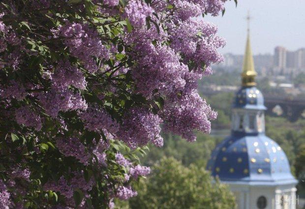 Прогноз погоди 28 квітня: частина України святкуватиме Великдень, а частина - Різдво