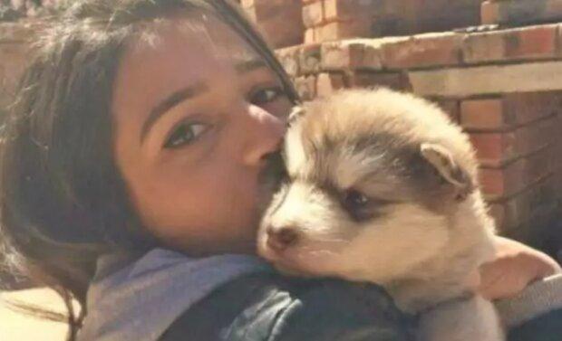 Собака Тидус, фото: instagram.com/trez_and_tydus