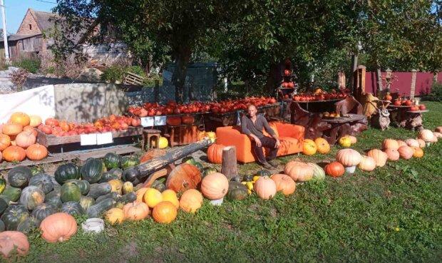 На Львовщине фермер вырастил смесь арбуза и тыквы, фото: социальные сети