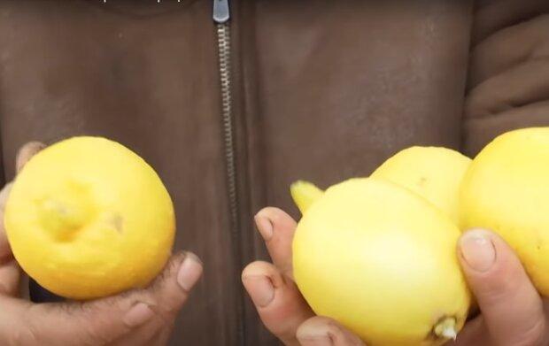 Скрин, видео YouTube лимон