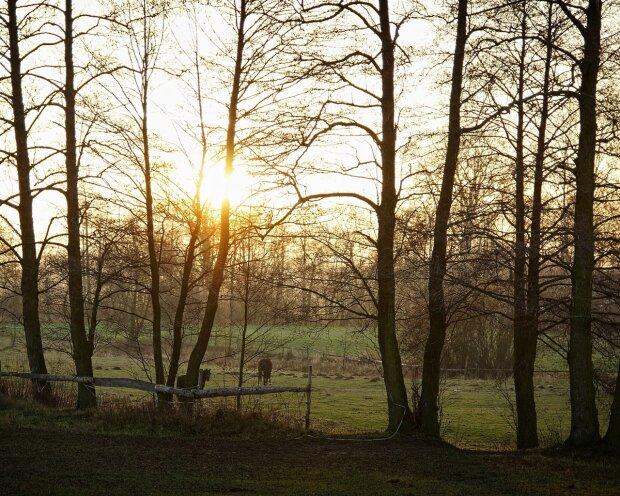 Погода в Україні, фото: wallhere.com
