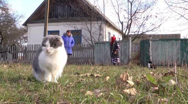 """Українська пенсіонерка показала, як живе на кордоні з Росією: """"Вже всі померли"""""""