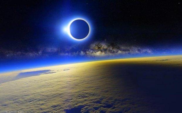 Вчені попередили про дивну поведінку тварин під час затемнення