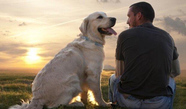 Хочете довше жити - заведіть собаку
