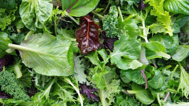 Диетологи назвали самые полезные овощи для печени