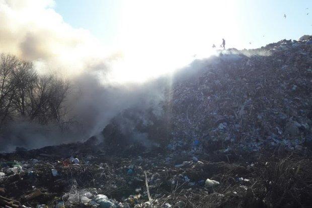 Масштабна пожежа на Львівщині: сотні метрів палають пекельним полум`ям
