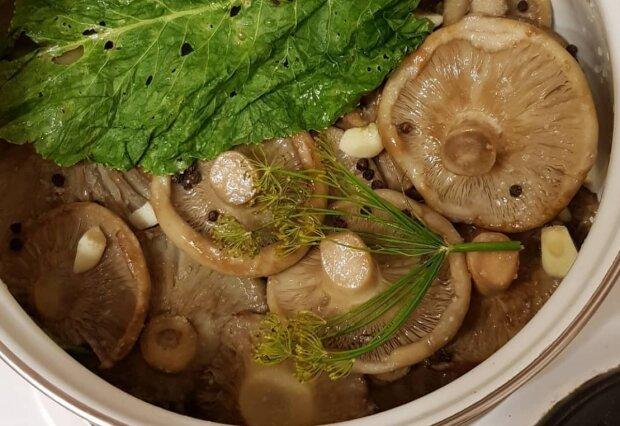 Засолка грибов, фото: instagram.com/zakatki_zakrutki