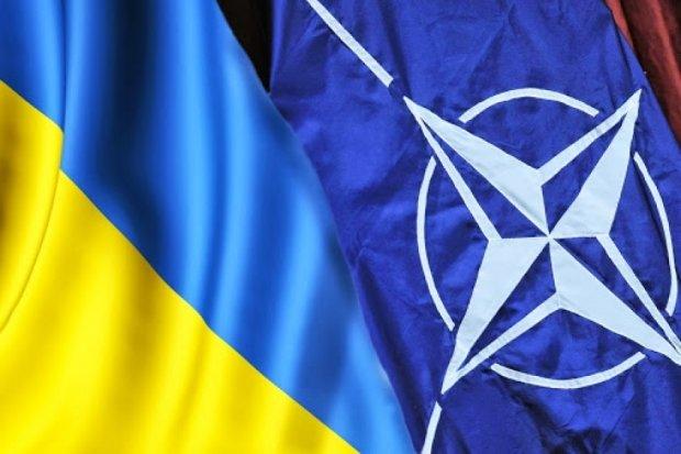 НАТО даст миллион евро украинской армии