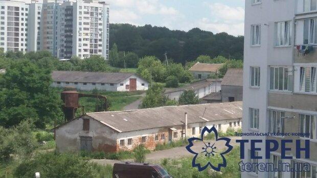 В Тернополе открыли необычный кинотеатр - голливудские блокбастеры на балконе