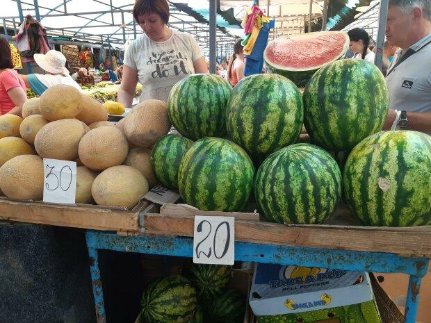 Сезон дині настав: як не прогадати зі смаком та ціною