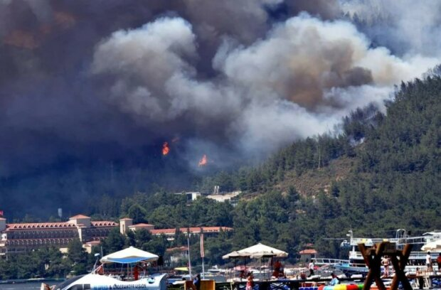 лісова пожежа в Туреччині, фото: ntv.com.tr
