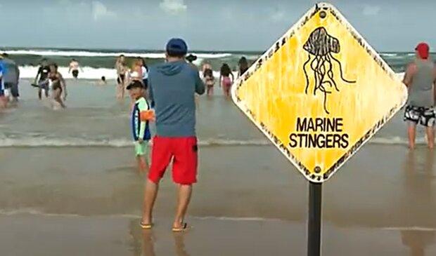 Пляж в Австралии, изображение иллюстративное, кадр из видео: YouTube
