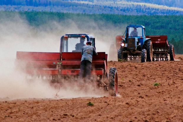 Мої нові рейдери: як поліція віджимає урожай фермерів, українці в шоці, відео