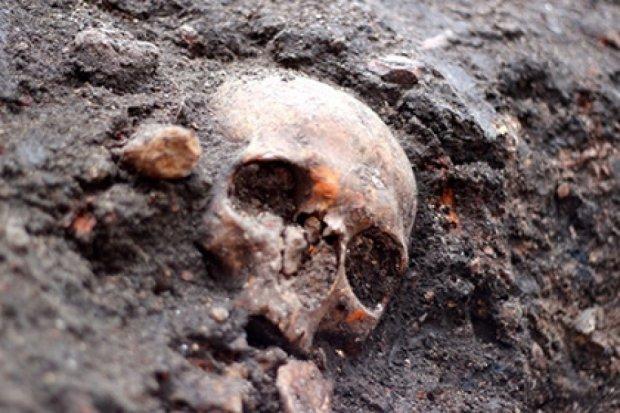 В Англії розкопають 3 тисячі загиблих від чуми