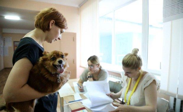 Вибори в Раду на Львівщині: відфутболені кандидати біжать до суду, мандат не дає спокою