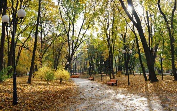 Кияни, насолоджуйтеся останнім теплом: яку погоду обіцяють синоптики 16 листопада