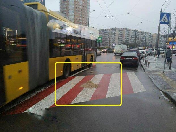 Гололед в Киеве, фото: Ху%вый Киев