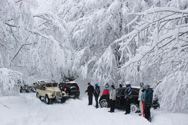В Крыму сошли шесть мощных лавин: сотни людей ждут спасения из снежного плена