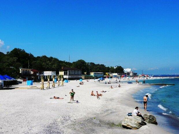 Оксамитовий сезон скасовується: медузи-гіганти атакували одеські пляжі