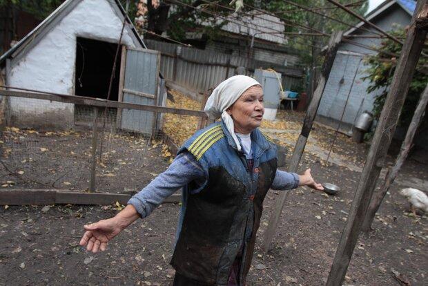 Пенсіонерка, фото - Вести