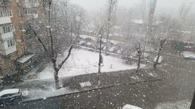 """Запоріжжя зависло в міжсезонні, ловіть """"осінній"""" прогноз на 31 січня"""