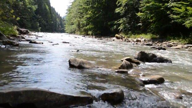 У річці під Франківськом виявили небезпечні бактерії - знімайте купальники, щоб потім не обіймати унітаз