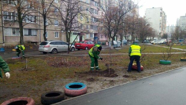 У Києві прибирають клумби з покришок, фолто: Facebook Дарницька РДА