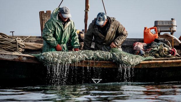 """Новый """"улов"""": российские пограничники схватили украинских рыбаков"""