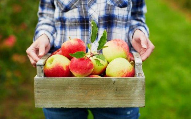 Яблучний Спас 2018: історія і традиції свята