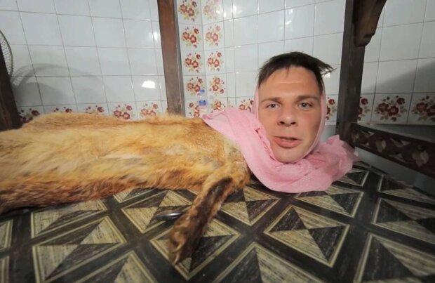 Дмитрий Комаров / скриншот из видео