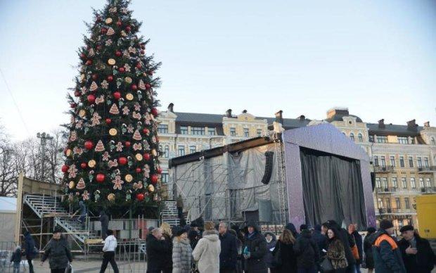 Главная елка страны осуществила волшебное превращение: фото