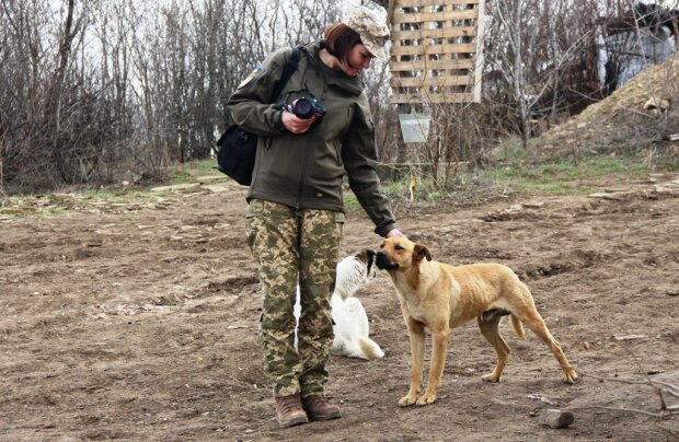 Донбас, фото: армія Інформ