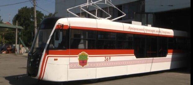 Буряк пустил школьников Запорожья в троллейбусы бесплатно - выборы на носу
