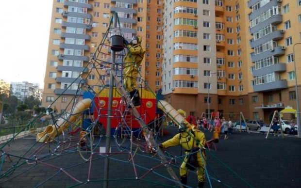 Агресивні комахи тероризують Москву: постраждали десятки дітей
