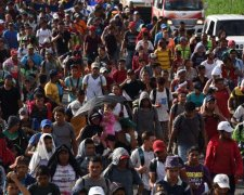 мигранты США