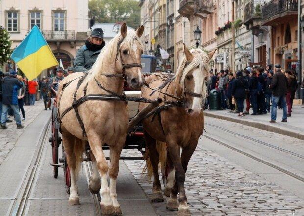 У Львові одурілі коні знесли лавку з людьми, дитина в реанімації: містяни поставили Садовому жорсткий ультиматум