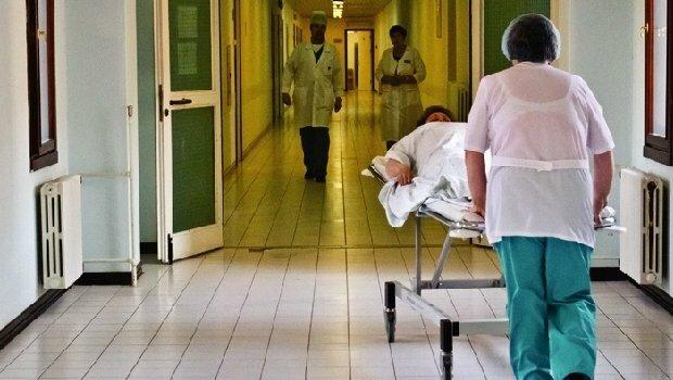 Ядовитые змеи терроризируют Львовщину, десятки пострадавших: медики сделали экстренное заявление