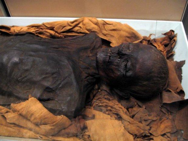 Таємниця мумії із Сан-Дієго: чому вчені приховують правду про велетнів