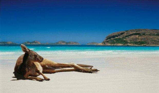 Австралийцам запретили купаться из-за фекалий