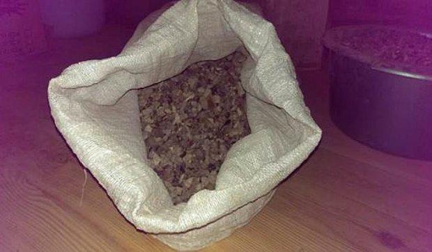 В Житомире поймали россиянина с 400 кг янтаря (фото)