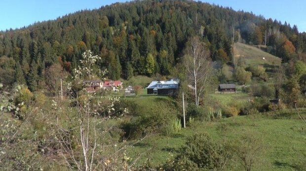 Жизнь горных сел Прикарпатья показали на примере колоды - вместо моста
