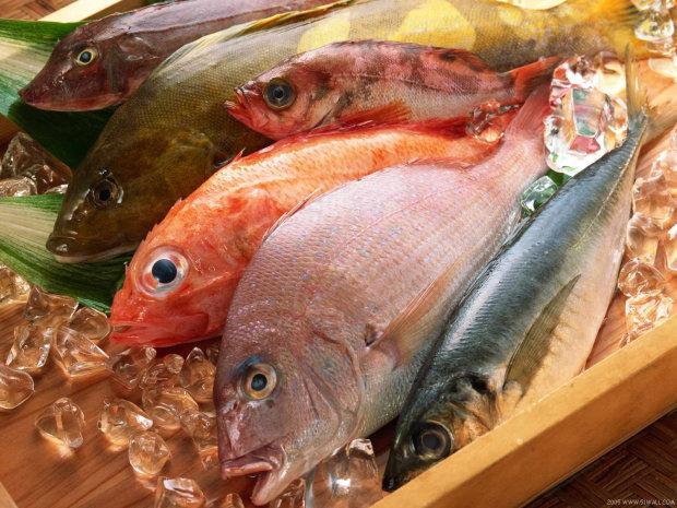 Известный диетолог рассказала, какая рыба самая полезная: всем по карману