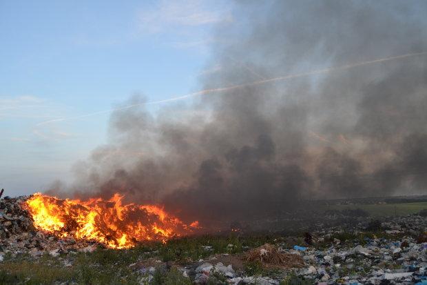 Львовщина в огне: адское пламя пожирает метр за метром, все  - из- за окурка