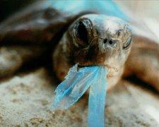 загрязнение планеты пластиком